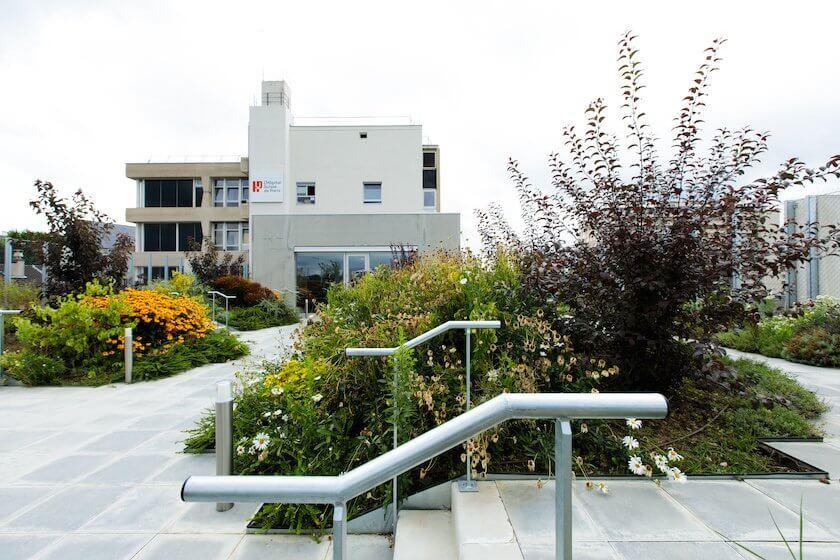 terrasse - confort - hopital suisse de paris - 92130 issy les moulineaux